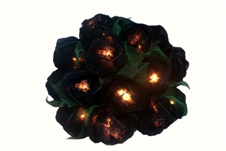Picture of Black Roses